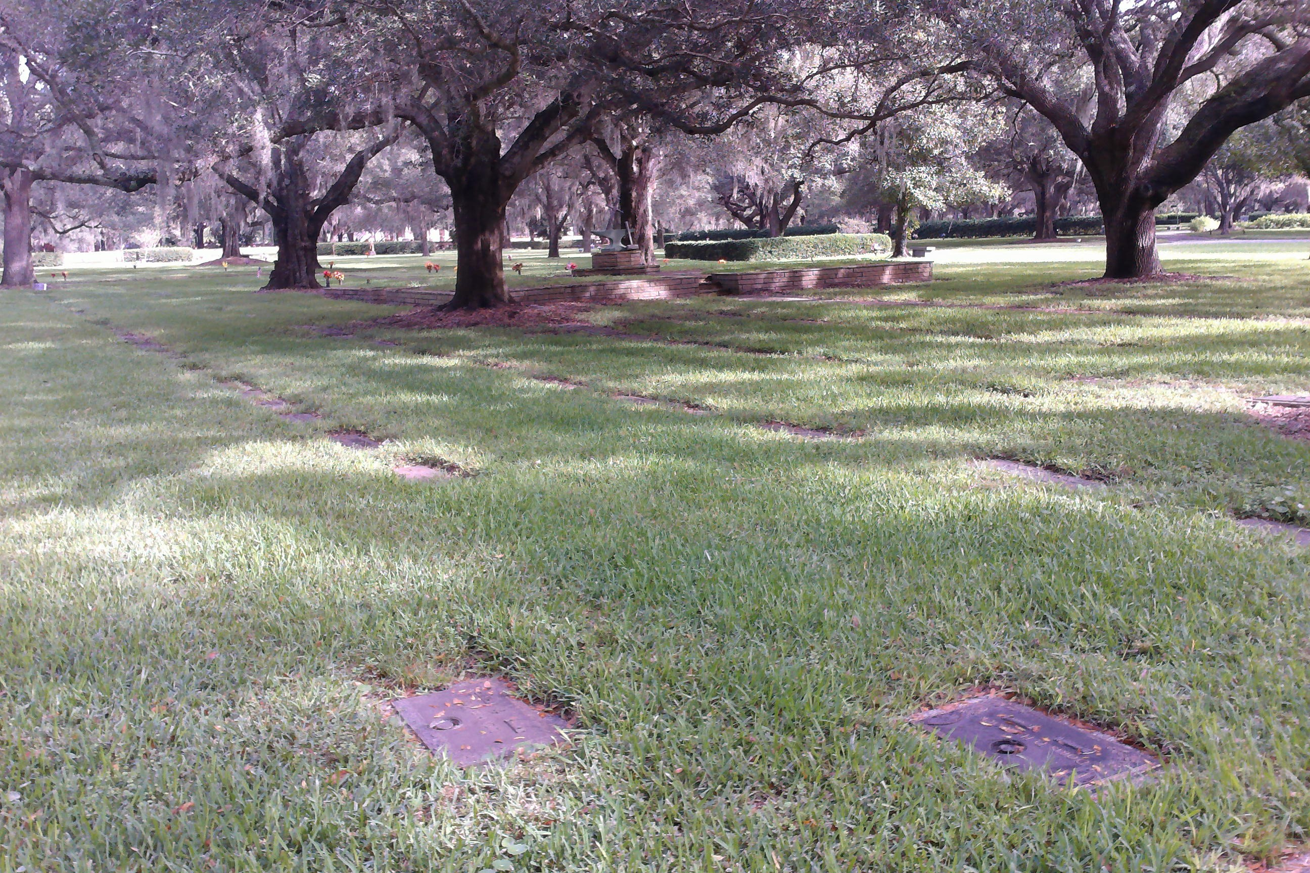 Bayside Gardens Iii Marshall Pest Control